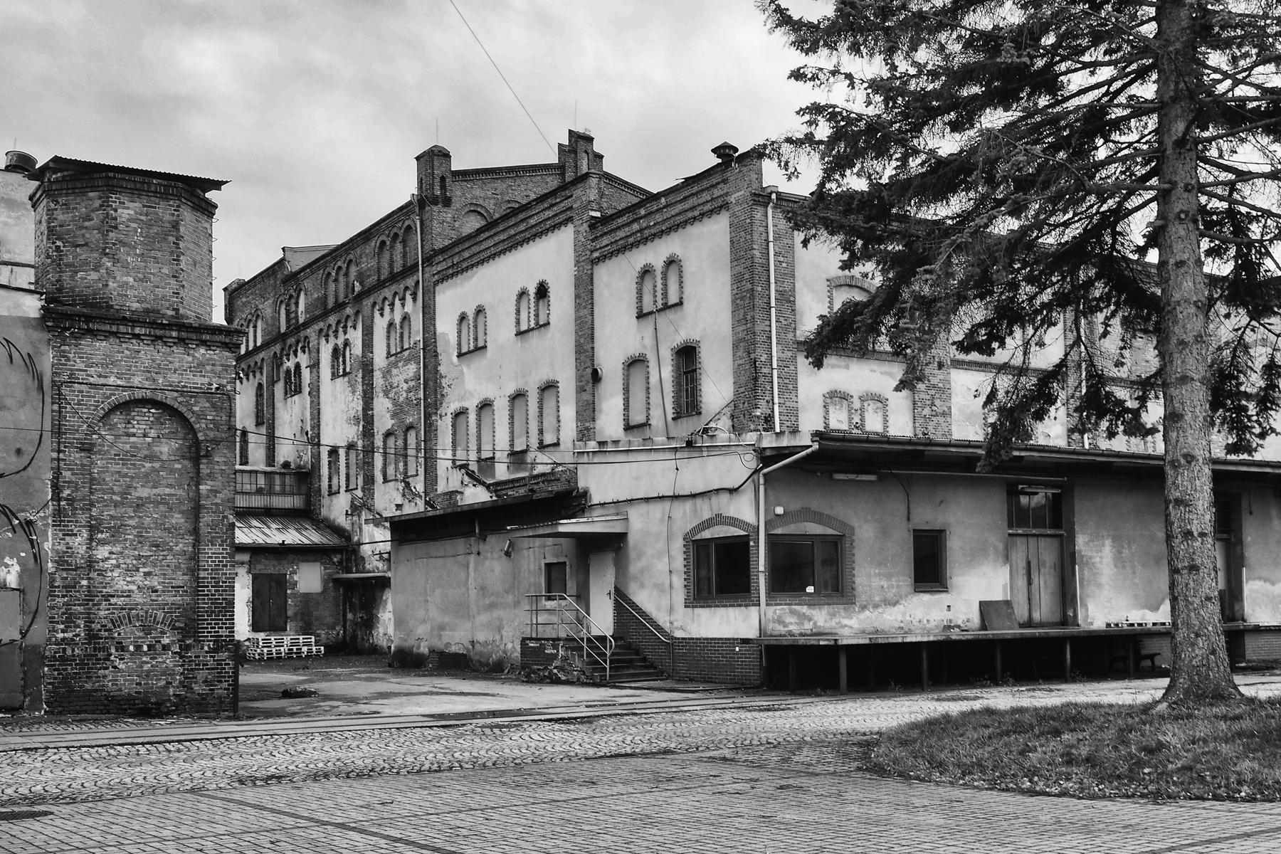 TYCHY_BROWAR_OBYWATELSKI